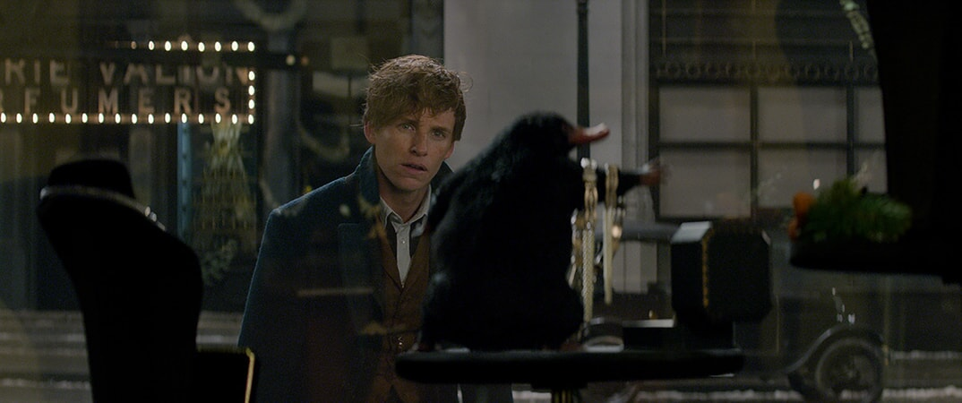 Fantastic Beasts And Where To Find Them - Image - Image 42