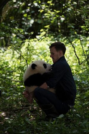 Pandas - Image - Image 11