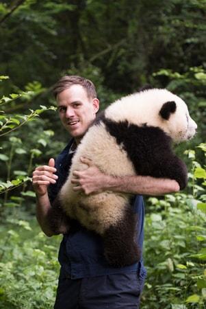 Pandas - Image - Image 15