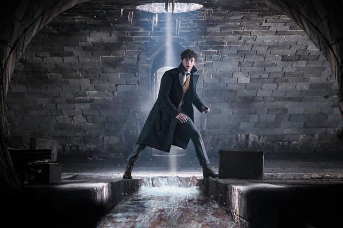 Les Animaux fantastiques: Les crimes de Grindelwald - Image - Image 1