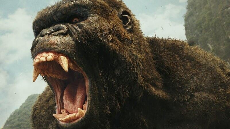 Kong: Skull Island - Image - Image 6
