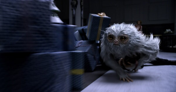 Fantastic Beasts And Where To Find Them - Image - Image 8