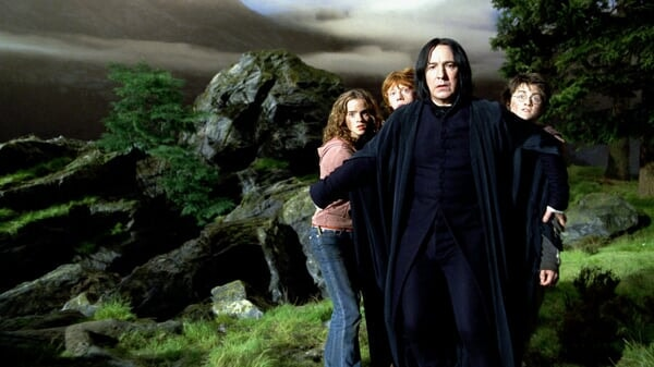 Harry Potter 8-Film Collection - Image - Image 4