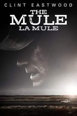 La Mule - Illustration