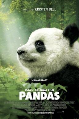 Pandas - Key Art